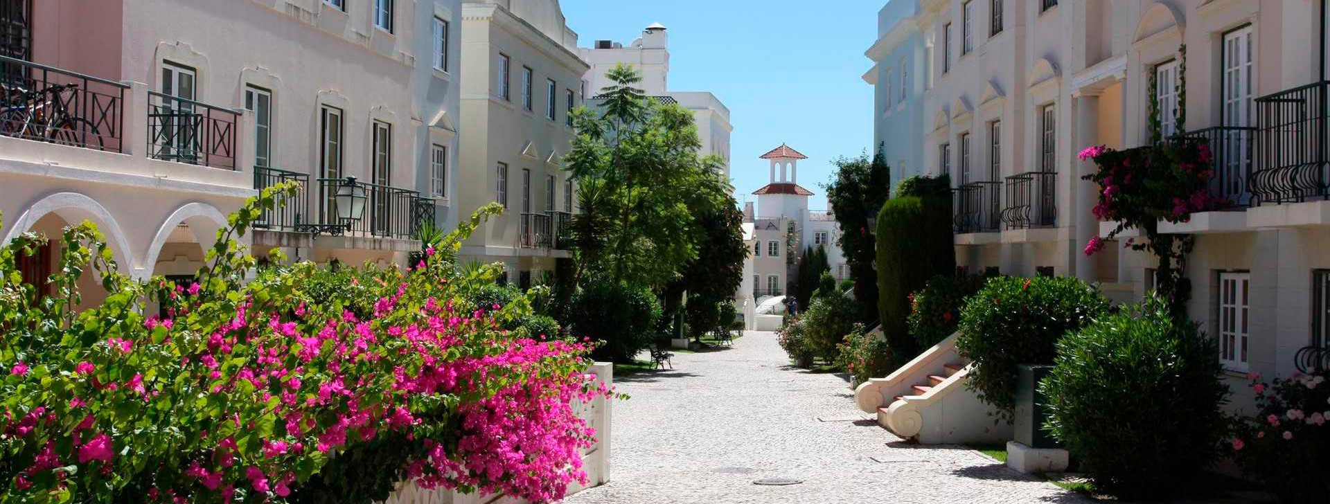 Procure no Algarve !