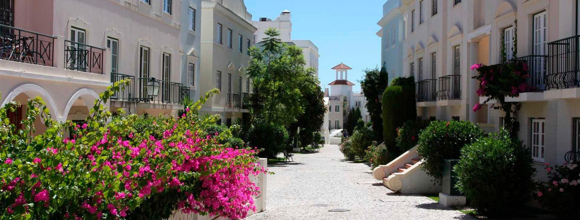 Recherche sur l'Algarve!